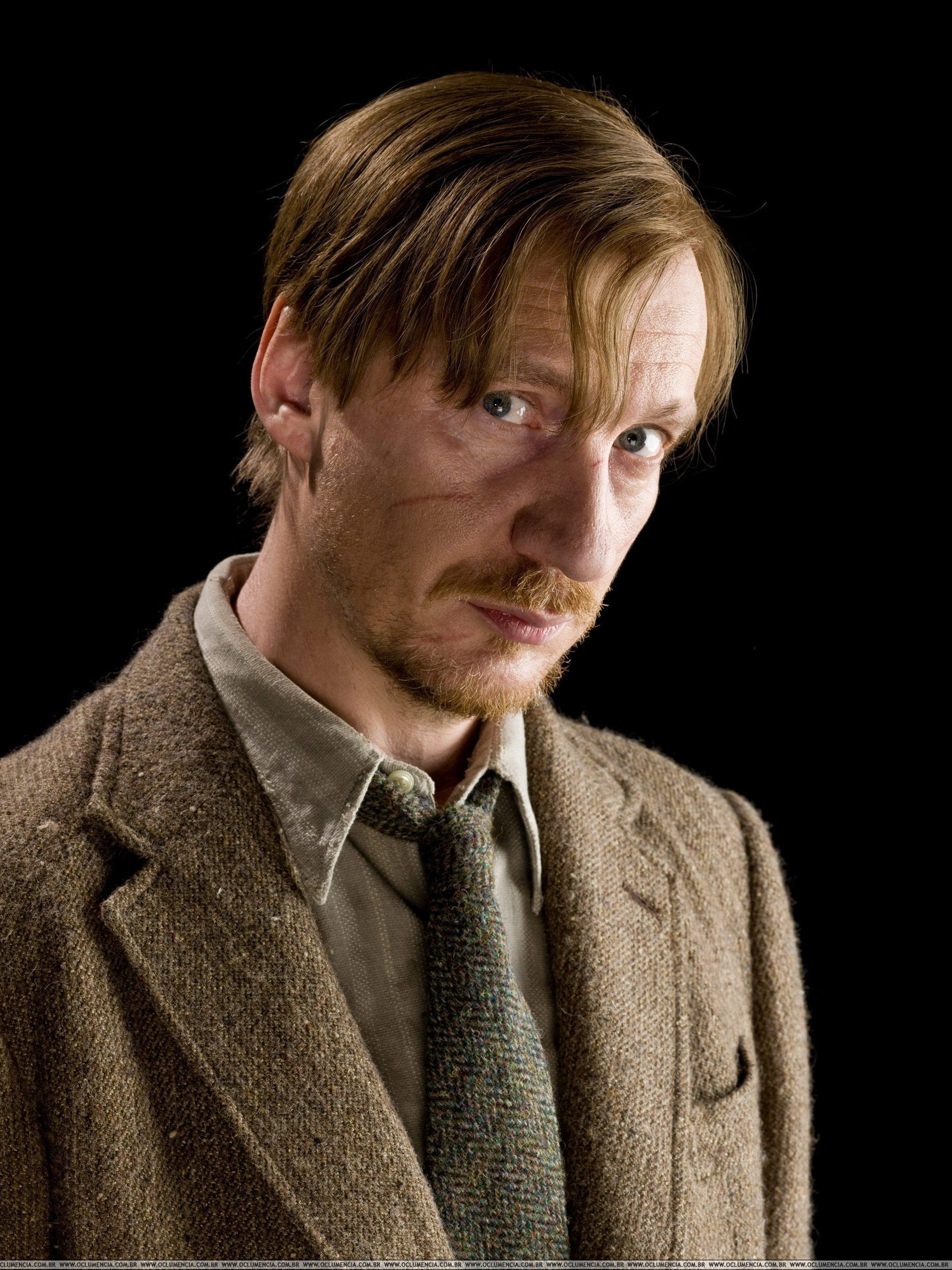 David thewlis free pictures video images news webcam