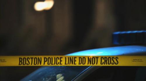 Rizzoli & Isles hình nền called boston police line