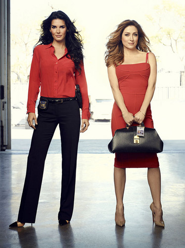 Rizzoli & Isles wallpaper containing a bearskin entitled jane rizzoli and maura isles