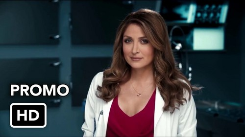 Rizzoli & Isles achtergrond containing a portrait titled maura isles