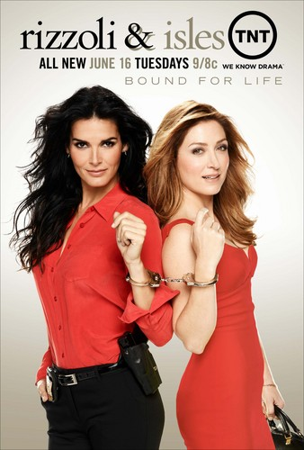 Rizzoli & Isles wallpaper containing attractiveness, a bustier, and a cocktail dress titled jane rizzoli and maura isles - poster