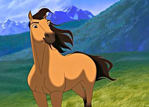The stallion of the cimarron