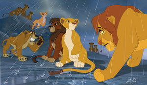 Simba has to learn to trust kiara