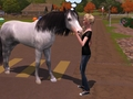 My sim and her horse - the-sims-3 photo