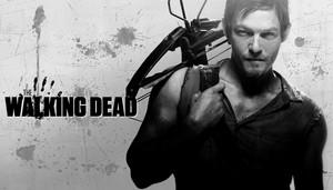 Daryl Dixon 2