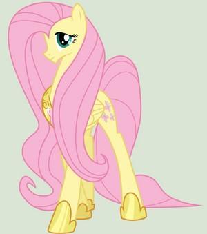 Princess fluttershy the co-peagus princess