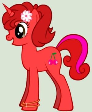 poni, pony Zoey
