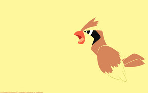 Pidgey wallpaper
