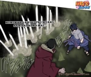 *Itachi & Sasuke*