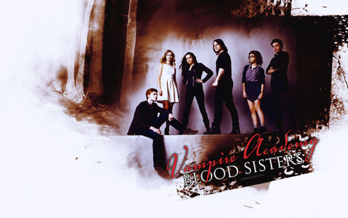 Vampire Academy wallpaper entitled VA Blood sisters