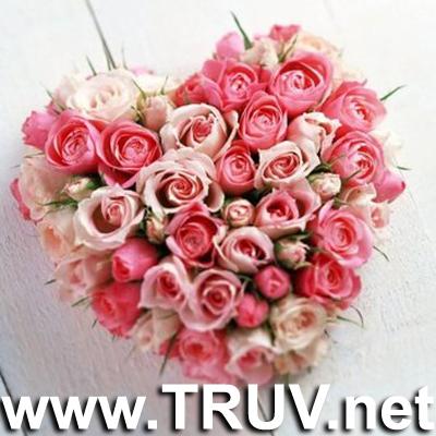 Violetta wallpaper with a bouquet, a rose, and a camellia titled Flori pentru Vio