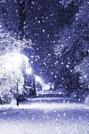 Winter night iphone Обои