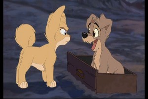 Scamp and Angel