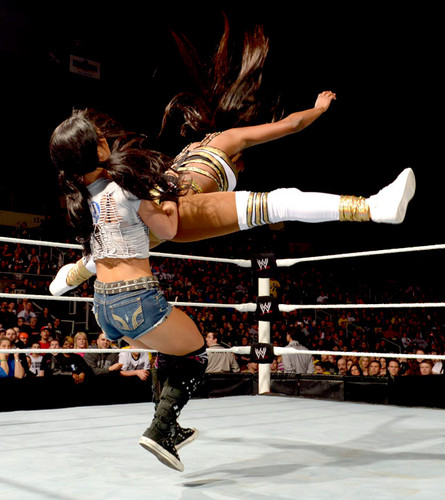 AJ Lee wallpaper entitled Raw Digitals 1/13/14