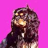 Cavalier King Charles 獚, 西班牙猎狗, 猎犬