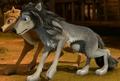 2 Amazing wolves