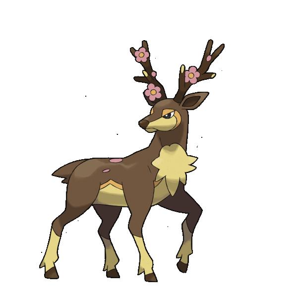 Sawsbuck the deer
