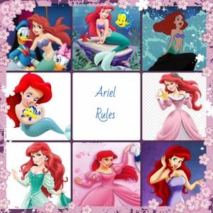 Ariel Rules