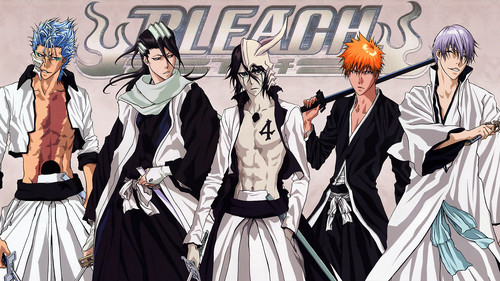 animê bleach wallpaper titled Bleach Characters
