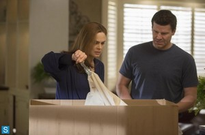 Bones - Episode 9.12 - The Ghost in the Killer