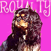 Dogs photo titled Cavalier King Charles Spaniel
