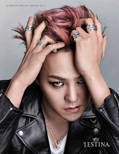G-Dragon wallpaper probably containing a portrait called G-Dragon for 'J.Estina's men's jewelry line 'UOMO'