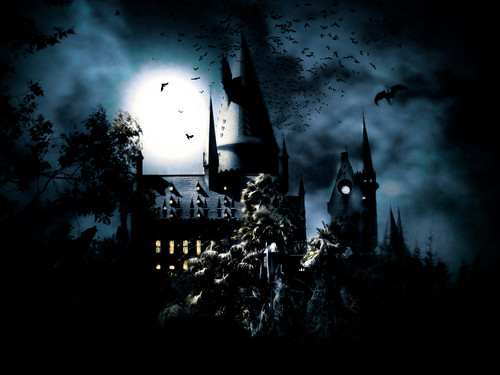 harry potter wallpaper probably containing a palace, a chateau, and a manor called Harry Potter wallpaper