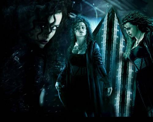 Гарри Поттер Обои probably with a pacific sardine and a концерт titled Harry Potter Обои