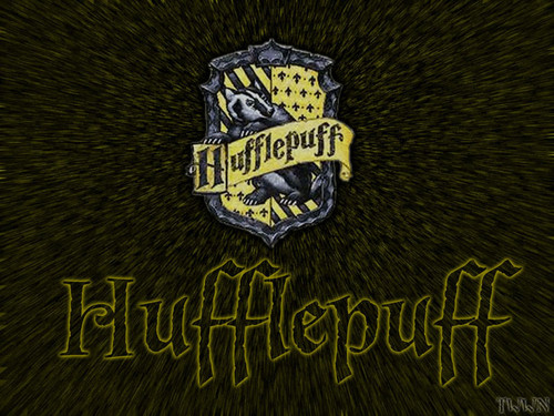 Harry Potter wallpaper called Harry Potter wallpapers