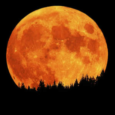 Harvest Moon Rising - Don't Miss Out the 'Most Beautiful Full Moon' of the Year Harvest-Moon-autumn-36444417-450-450
