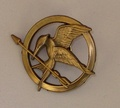 Mockingjay pin - the-hunger-games photo