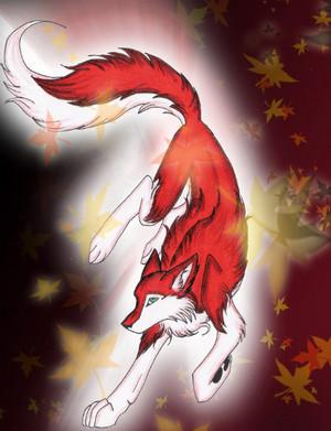 Lia in волк form # 2