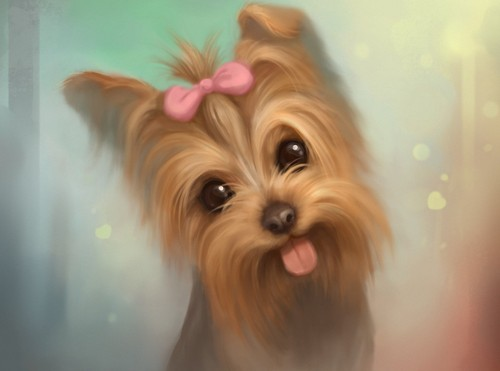 L~B~J~ images Cute Yorkie Dog HD wallpaper and background ...