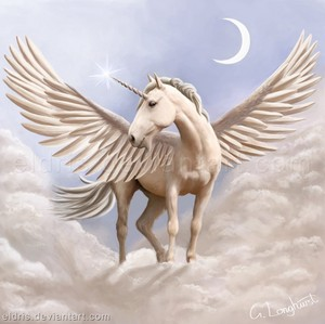 Beautiful Pegasus!