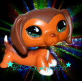 ☆LPSєρι¢ηє§§☆ Icon 2 - littlest-pet-shop fan art