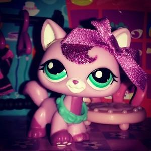 pink Sparkle Cat