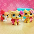The Popular Girls - littlest-pet-shop photo