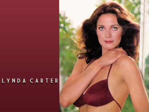 Lynda Carter karatasi la kupamba ukuta possibly with a bikini and attractiveness entitled Lynda Carter