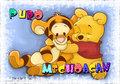 Michoacan  - winnie-the-pooh fan art