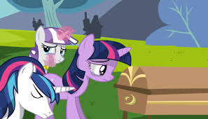 Sad MLP fotos