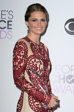 Stana at the PCA 2014