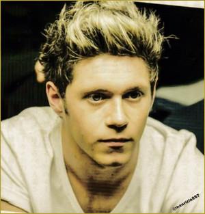 Niall Horan 2014