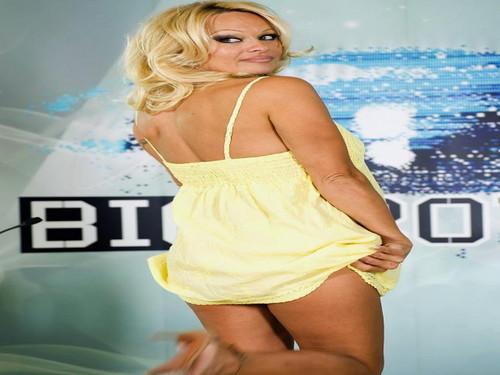 Pamela Anderson wallpaper entitled Pamela