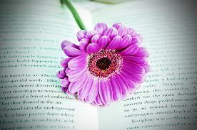 Flower, book