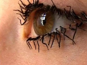 Fly leg eyelashes
