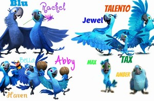 Blu and Talento's Families