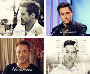 Robert Downey Jr. - A year in review (2013)