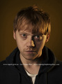THE GUARDIAN PHOTOSHOOT BY RICHARD SAKER - rupert-grint photo