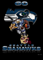 Go Seahawks - seattle-seahawks photo