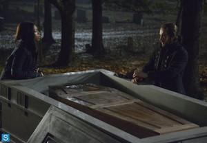 Sleepy Hollow - Episode 1.12 - 1.13 (Season Finale) - Promotional 写真